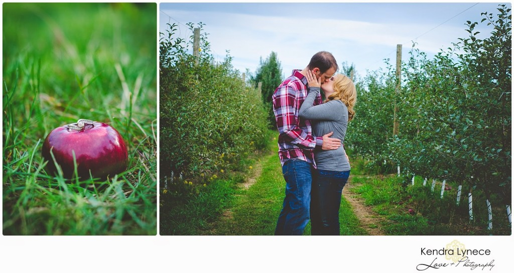 Robinette's Apple Orchard Grand Rapids Michigan Engagement Photos, apple orchard wedding engagment photos, apple orchard, cornfield wedding engagement photos, wedding engagment photo inspiration, apple ring shot