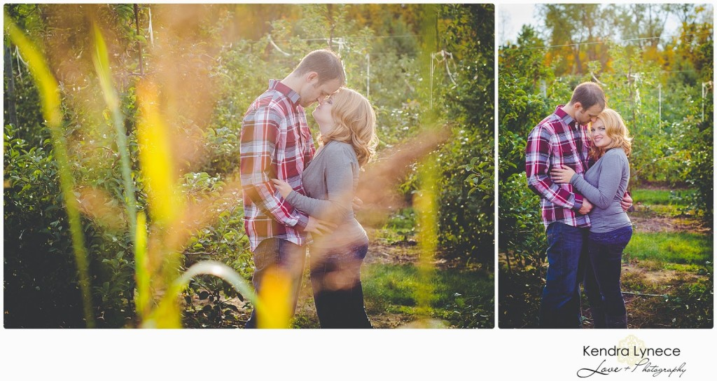 Robinette's Apple Orchard Grand Rapids Michigan Engagement Photos, apple orchard wedding engagment photos, apple orchard, cornfield wedding engagement photos, wedding engagment photo inspiration