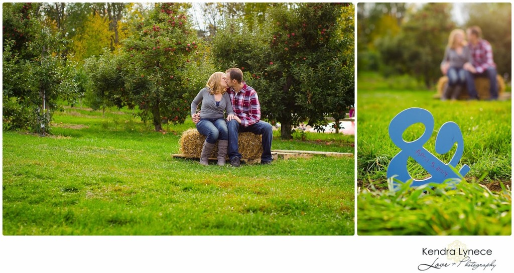 Robinette's Apple Orchard Grand Rapids Michigan Engagement Photos, apple orchard wedding engagment photos, apple orchard, cornfield wedding engagement photos, couple kissing under apple tree
