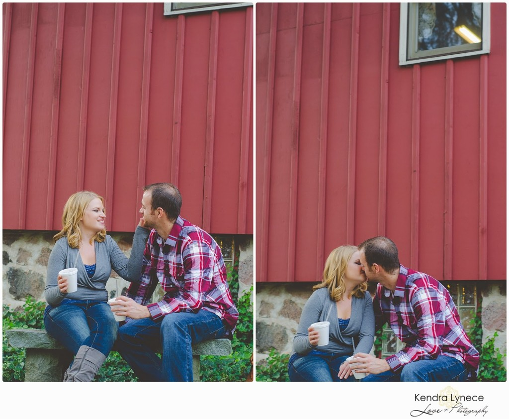 Robinette's Apple Orchard Grand Rapids Michigan Engagement Photos, apple orchard wedding engagment photos, apple orchard, cornfield wedding engagement photos