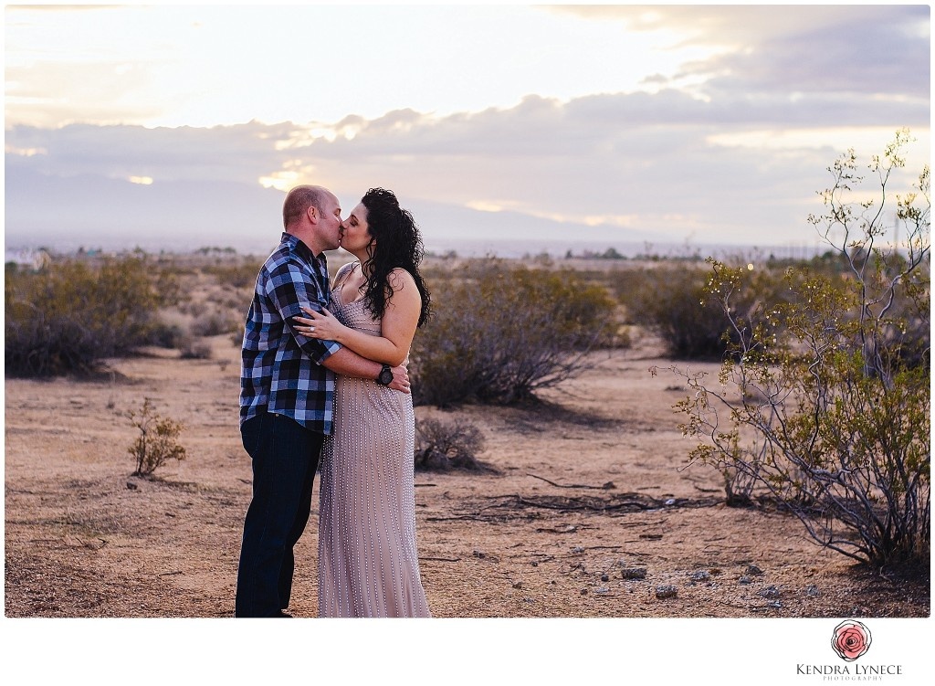 davids bridal engagement dress, stylized engagement session, apple valley wedding photographer, david's bridal wedding photography