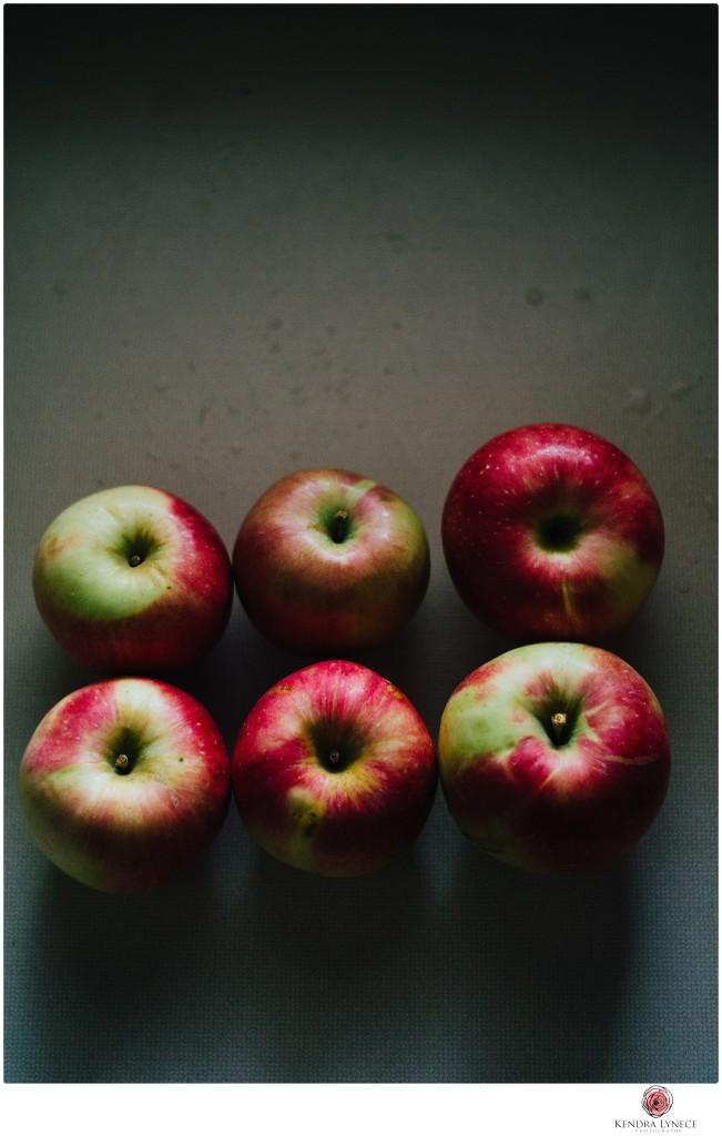 michigan wedding photographer, destination wedding photographer, apple orchard wedding photographer,