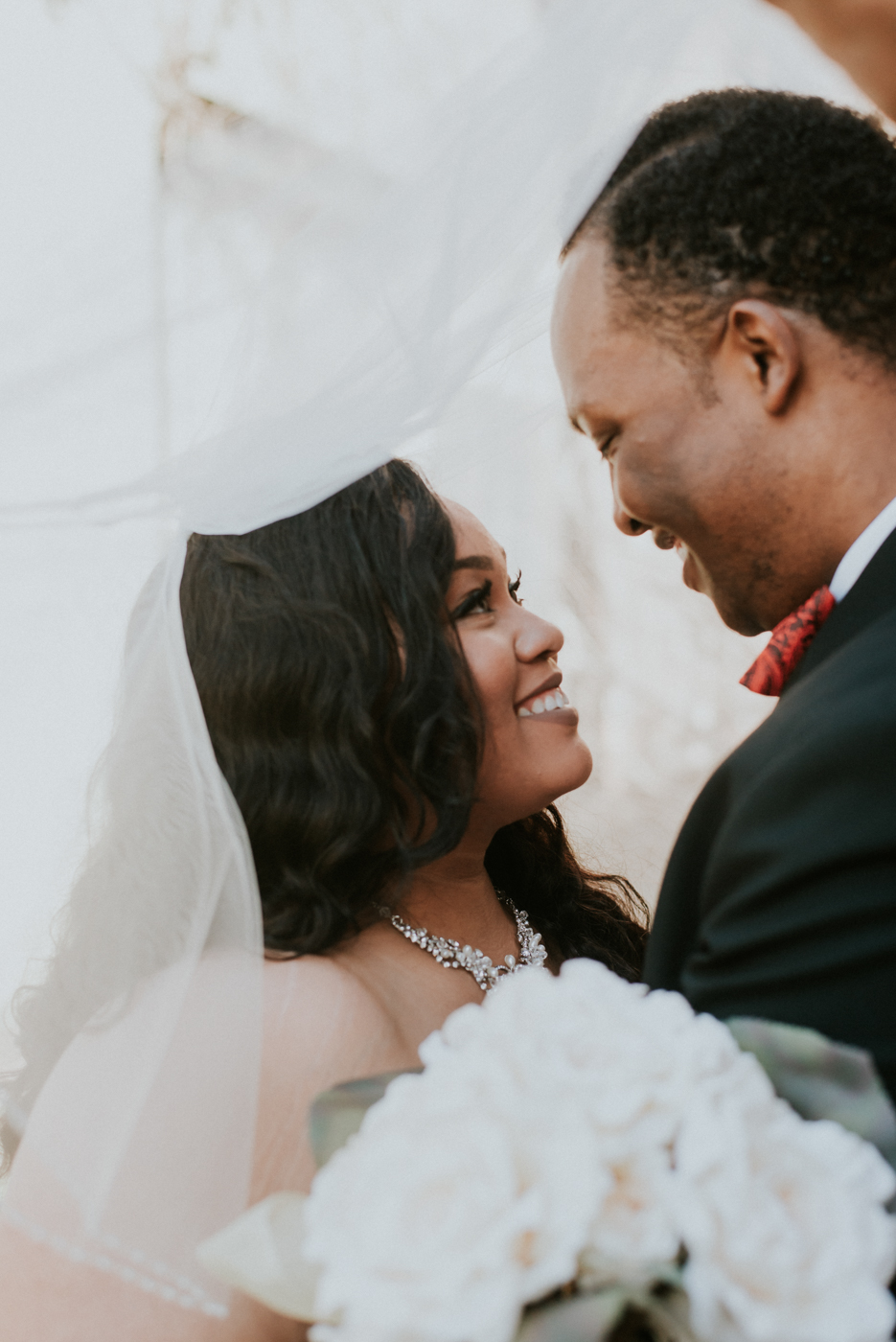 Top African American Wedding Photographers in Grand Rapids Michi