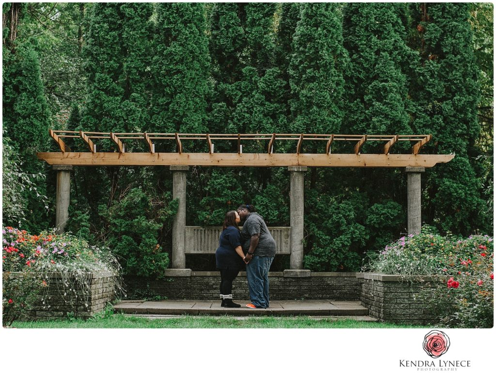 during storm Frances Park Lansing Michigan wedding engagement photographers